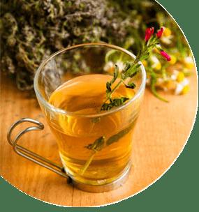 Fitoterapia y aromaterapia