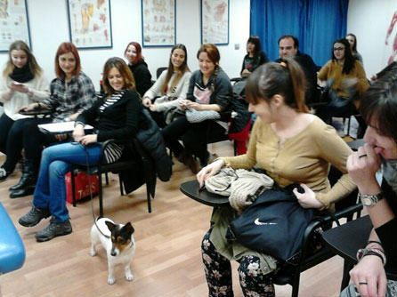 seminario primeros auxilios para mascotas