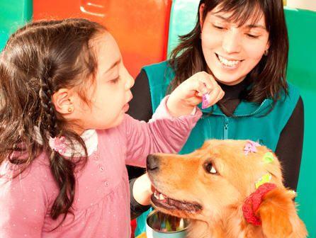 Técnico en intervención asistida con animales