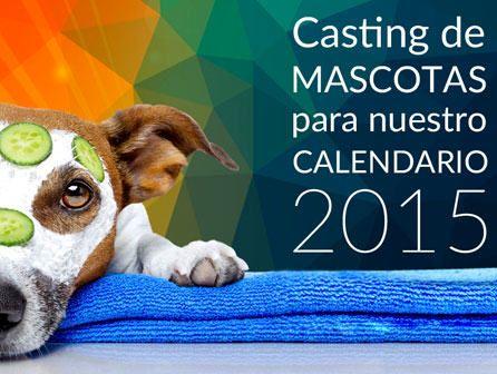 calendario de mascotas
