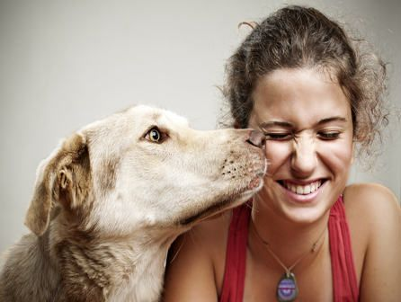 Técnico Atención Asistida con Animales-ISED