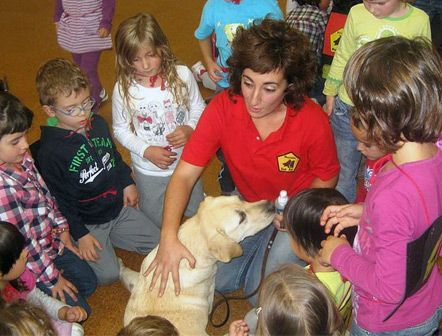 Curso de  Técnico en intervención asistida con animales