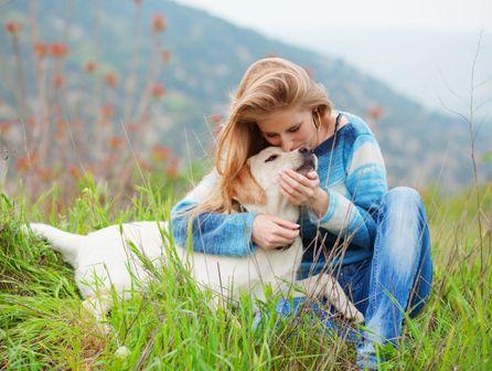 curso de auxiliar de veterinario