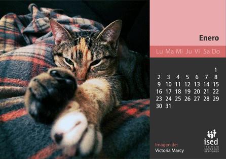 curso de veterinaria - calendario 2017
