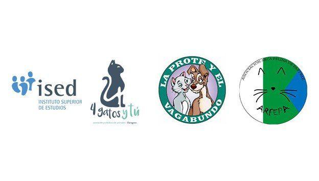 ISED Veterinaria colabora con diferentes protectoras de animales por navidad