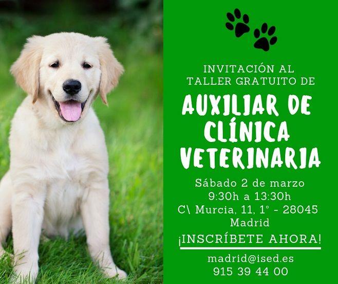 invitacion-taller-auxiliar-clinica-veterinaria-Madrid-2-marzo-2019