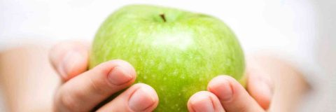 curso-bromatologia-alimentos-nutricion