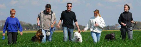curso-educador-canino
