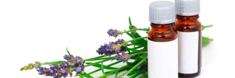 curso-homeopatia-aplicada-animales