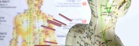 curso-normalizacion-del-tejido-blando-acutomo