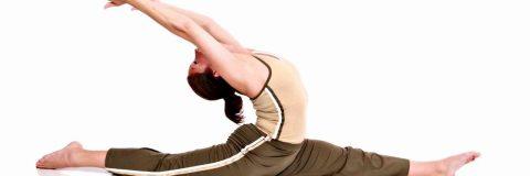 curso-stretching-activo-sistema-locomotor